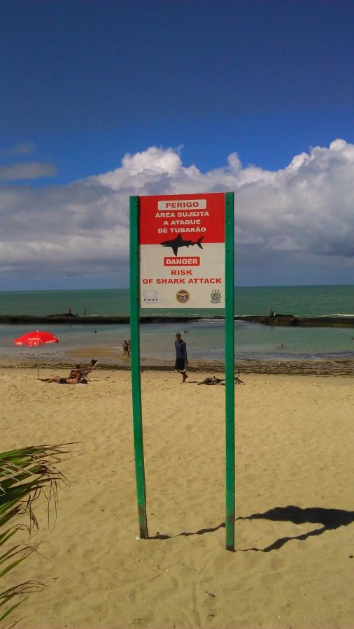 Perigo Tubarão