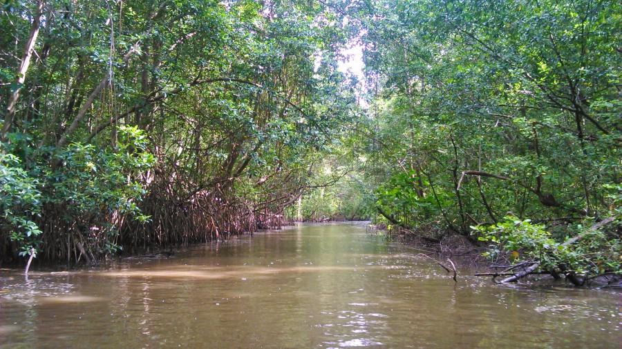 Canal no rio Preguiças