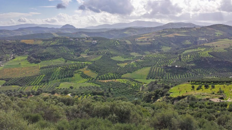 Creta - Creete