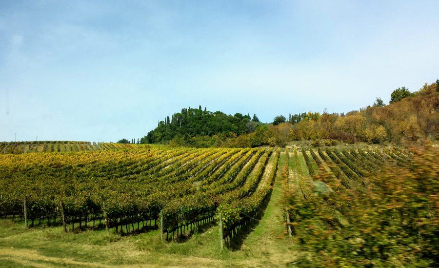 Toscana - Itália